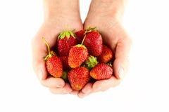 Φράουλες στα χέρια γυναικών Στοκ Εικόνα