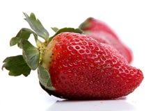 Φράουλες στη γραμμή Στοκ φωτογραφίες με δικαίωμα ελεύθερης χρήσης