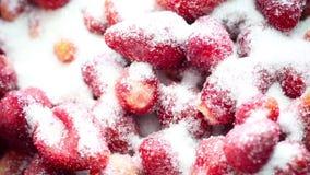 Φράουλες στη ζάχαρη απόθεμα βίντεο