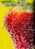Φράουλες στις φυσαλίδες Στοκ Φωτογραφίες