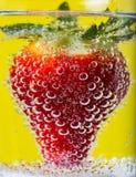 Φράουλες στις φυσαλίδες Στοκ φωτογραφία με δικαίωμα ελεύθερης χρήσης