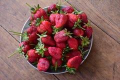 Φράουλες στο ανοξείδωτο πιάτο Στοκ Εικόνα
