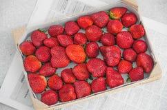Φράουλες στο ξύλινο πλαίσιο 1 στοκ εικόνα