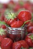 Φράουλες συγκομιδών σε έναν μικρό κάδο Στοκ Φωτογραφίες