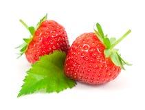 Φράουλες τα φύλλα που απομονώνονται με στο λευκό Στοκ Φωτογραφία