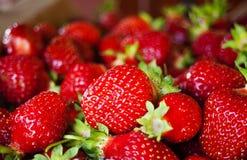 Φράουλες 2 Στοκ Φωτογραφίες