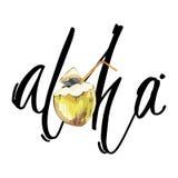 Φράση εγγραφής - Aloha Σύνθεση με τη συρμένη χέρι καρύδα watercolor Υπόβαθρο για τη συσκευασία τροφίμων, αφίσες καρτών Στοκ Εικόνες