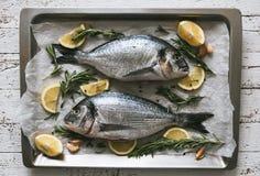 Φρέσκα άψητα ψάρια Dorado ή τσιπουρών με το λεμόνι και το δεντρολίβανο Στοκ φωτογραφία με δικαίωμα ελεύθερης χρήσης