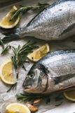 Φρέσκα άψητα ψάρια Dorado ή τσιπουρών με το λεμόνι και το δεντρολίβανο Στοκ εικόνα με δικαίωμα ελεύθερης χρήσης