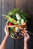 Φρέσκα αγροτικά τρόφιμα φθινοπώρου, συγκομιδή πτώσης γεωργίας στοκ φωτογραφία