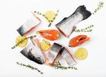 Φρέσκα ακατέργαστα κόκκινα ψάρια κομματιών σολομών που απομονώνονται σε ένα άσπρο υπόβαθρο Στοκ Φωτογραφία