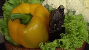 Φρέσκα ακατέργαστα οργανικά ανάμεικτα λαχανικά: Κολοκύθια, φύλλα σαλάτας, κουνουπίδι, μελιτζάνα, πιπέρι κουδουνιών φιλμ μικρού μήκους