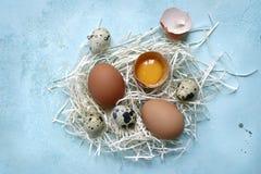 Φρέσκα ακατέργαστα οργανικά αυγά κοτόπουλου και ορτυκιών Τοπ άποψη με το αντίγραφο spac στοκ εικόνες