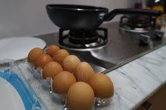 φρέσκα αυγά για το μαγείρεμα Στοκ εικόνες με δικαίωμα ελεύθερης χρήσης