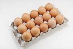 Φρέσκα αυγά κοτόπουλου στη συσκευασία στοκ εικόνες