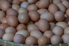 Φρέσκα αυγά κοτών Στοκ φωτογραφία με δικαίωμα ελεύθερης χρήσης