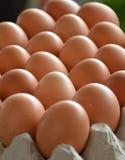 Φρέσκα αυγά σε μια αγορά Στοκ Εικόνες