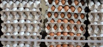 Φρέσκα αυγά σε μια αγορά Στοκ Φωτογραφίες