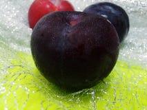 Φρέσκα αυστραλιανά μαύρα δαμάσκηνα Στοκ Εικόνα