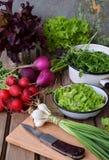 Φρέσκα λαχανικά άνοιξη: πράσινου και πορφυρού μαρούλι ραδικιών, κρεμμύδια, arugula σε ένα ξύλινο υπόβαθρο Προετοιμασία των τροφίμ Στοκ φωτογραφία με δικαίωμα ελεύθερης χρήσης