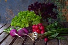 Φρέσκα λαχανικά άνοιξη: πράσινου και πορφυρού μαρούλι ραδικιών, κρεμμύδια, arugula σε ένα ξύλινο υπόβαθρο Προετοιμασία των τροφίμ Στοκ Φωτογραφίες