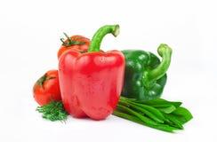 Φρέσκα λαχανικά, κόκκινα και πράσινα πιπέρια, ντομάτες, άνηθος και κριοί Στοκ φωτογραφίες με δικαίωμα ελεύθερης χρήσης