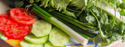φρέσκα λαχανικά πιάτων στοκ εικόνες