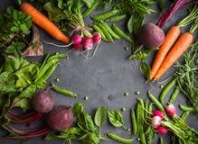 φρέσκα λαχανικά πιπεριών αραβόσιτου καρότων ανασκόπησης cabbadge Στοκ Εικόνα