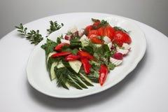 φρέσκα λαχανικά σαλάτας Στοκ φωτογραφία με δικαίωμα ελεύθερης χρήσης