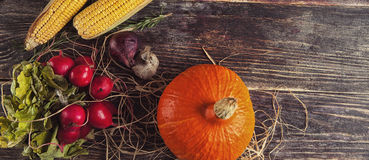 Φρέσκα λαχανικά στον ξύλινο πίνακα το φθινόπωρο Στοκ εικόνα με δικαίωμα ελεύθερης χρήσης