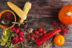 Φρέσκα λαχανικά στον ξύλινο πίνακα το φθινόπωρο Στοκ Φωτογραφίες