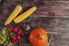 Φρέσκα λαχανικά στον ξύλινο πίνακα το φθινόπωρο Στοκ Εικόνα
