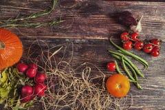 Φρέσκα λαχανικά στον ξύλινο πίνακα το φθινόπωρο Στοκ εικόνες με δικαίωμα ελεύθερης χρήσης