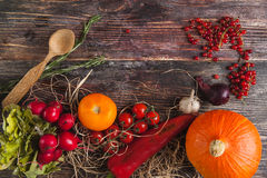 Φρέσκα λαχανικά στον ξύλινο πίνακα το φθινόπωρο Στοκ Φωτογραφία