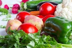 Φρέσκα λαχανικά στο ξύλινο άσπρο υπόβαθρο Στοκ Φωτογραφίες