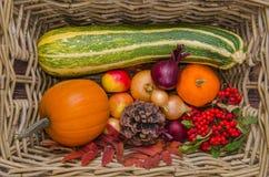 Φρέσκα λαχανικά φθινοπώρου σε ένα καλάθι Στοκ Φωτογραφίες