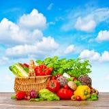 φρέσκα λαχανικά χορταριών Καλάθι αγορών με το συστατικό τροφίμων στοκ εικόνες με δικαίωμα ελεύθερης χρήσης