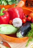 Φρέσκα λαχανικά (ratatouille συστατικά) Στοκ εικόνα με δικαίωμα ελεύθερης χρήσης