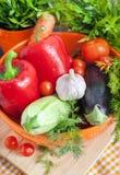 Φρέσκα λαχανικά (ratatouille συστατικά) Στοκ Φωτογραφίες