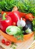 Φρέσκα λαχανικά (ratatouille συστατικά) Στοκ Εικόνες