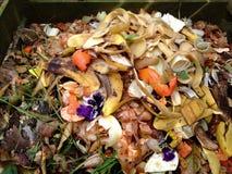 Φρέσκα βιο-απόβλητα και λίπασμα Στοκ Εικόνες