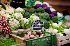 Φρέσκα βιο μανιτάρια και διάφορα λαχανικά στην αγορά αγροτών στο Στρασβούργο, Γαλλία Στοκ εικόνες με δικαίωμα ελεύθερης χρήσης