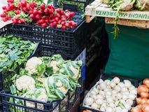 Φρέσκα εποχιακά ιταλικά λαχανικά στην αγορά Στοκ φωτογραφία με δικαίωμα ελεύθερης χρήσης