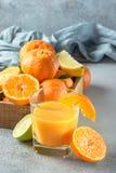 Φρέσκα εσπεριδοειδή Tangerines, γυαλί ασβέστη, λεμονιών και χυμού Στοκ Φωτογραφίες
