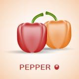 Φρέσκα ζωηρόχρωμα πιπέρια Κόκκινο και πορτοκάλι Απεικόνιση αποθεμάτων