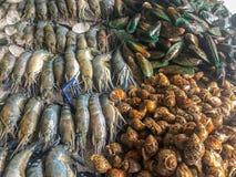 Φρέσκα θαλασσινά στον πάγο στην αγορά ψαριών στοκ φωτογραφία με δικαίωμα ελεύθερης χρήσης