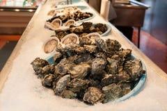 Φρέσκα θαλασσινά στρειδιών, πρόσφατα στρείδια στην αλιεία του λιμένα στοκ φωτογραφία με δικαίωμα ελεύθερης χρήσης