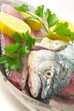 φρέσκα θαλασσινά ψαριών Στοκ Φωτογραφίες