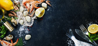 φρέσκα θαλασσινά Στοκ Εικόνες