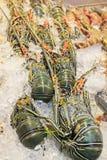 Φρέσκα θαλασσινά, Ταϊλάνδη Στοκ φωτογραφία με δικαίωμα ελεύθερης χρήσης